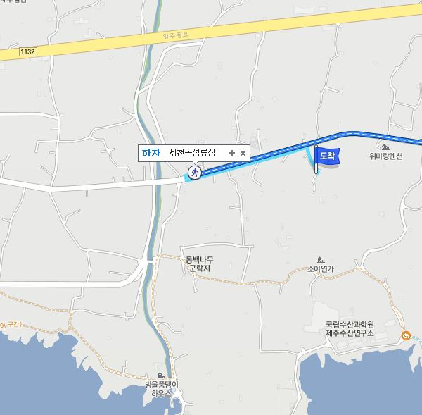 jeju-intercity-bus-terminal-to-wimi-camellia-forest