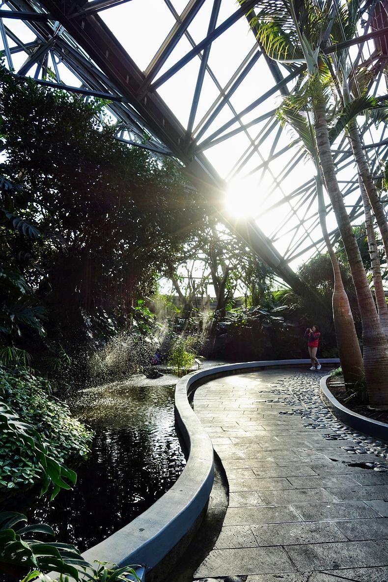 yeomiji botanical garden a climate controlled oasis u2013 jeju